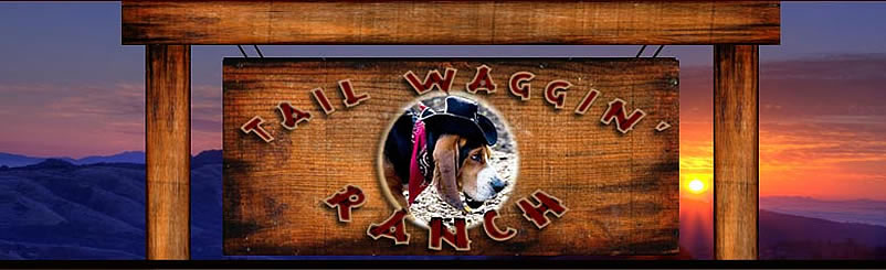 Tail Waggin Ranch